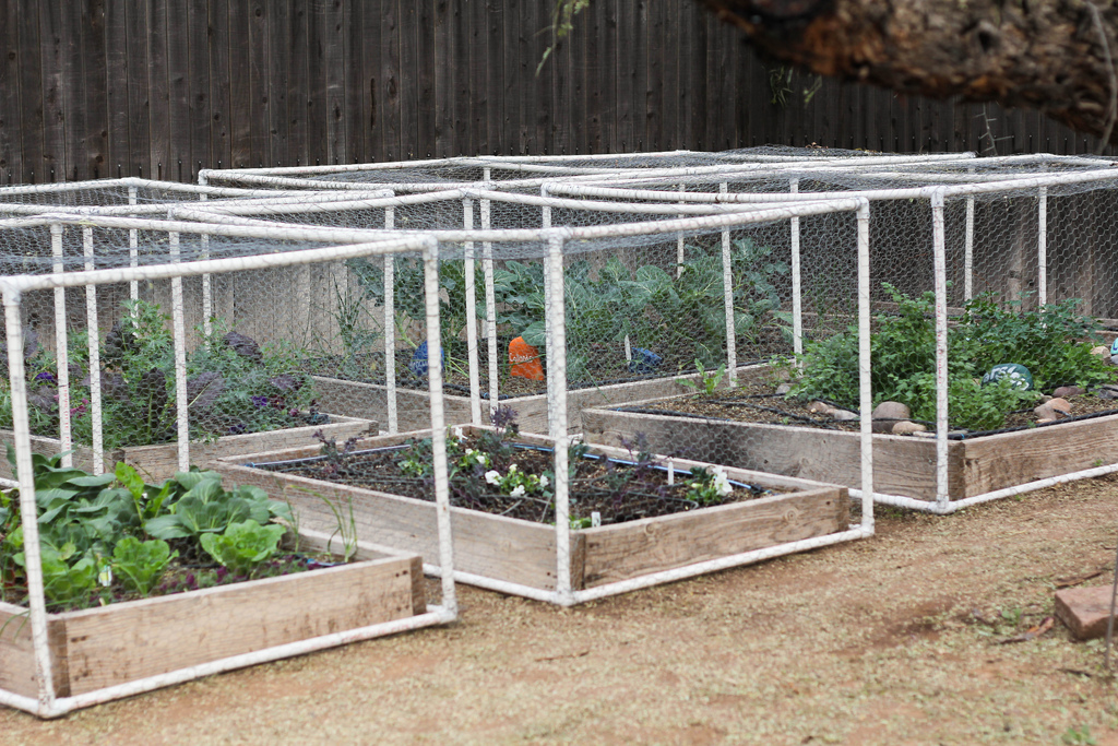 How use pvc pipe for home and garden