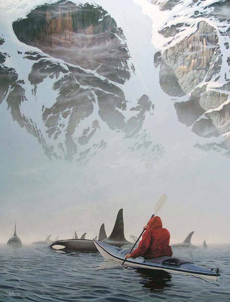 Paddling with a pack of Orca whales in Alaska and San Juans .. Acceptance ~ Chri