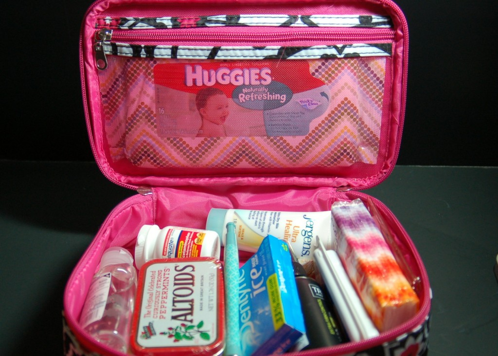 Cute car kit to keep these things close at hand without cluttering up a purse! I