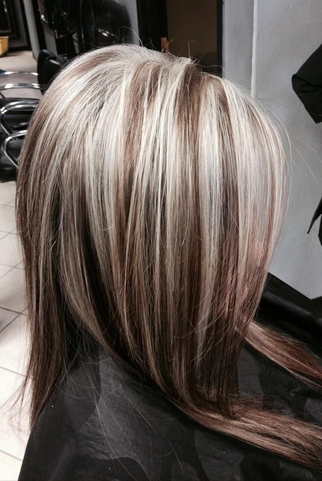 Blonde hair with dark highlights ideas we know how to do it blonde hair with dark highlights ideas page 1 of 6 pmusecretfo Images