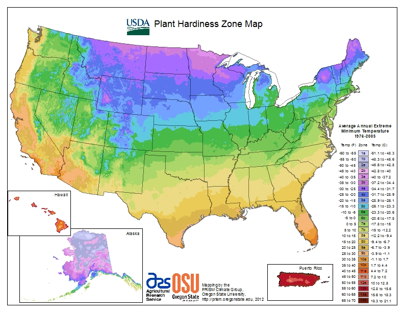 Literally, just released! The new USDA Zone Hardiness Map!! Taking down the old
