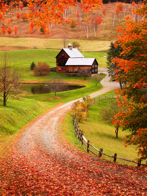 Vermont…I have always wanted to visit during the peak of fall…
