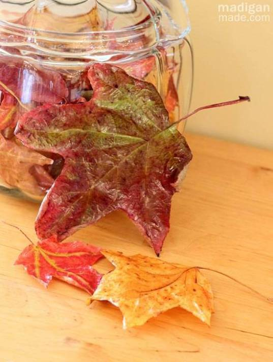 Preserve fall leaves -   HOME DECORATIONS WITH FALL LEAVES