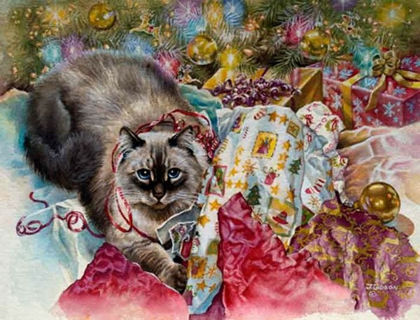 Christmas cat by Judy Gibson