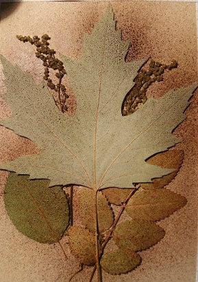 Leaf Watercolor Ink Art
