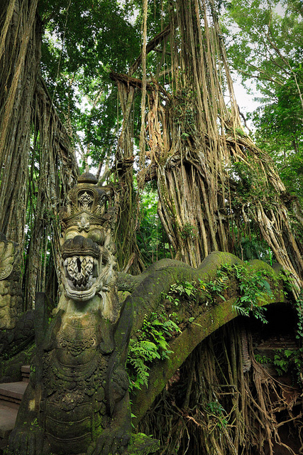 Monkey Forest Temple in Bali, Indonesia