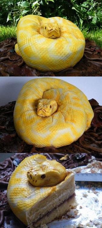 snake cake… snake