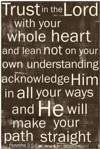 proverbs 3:5-6 Most fave scripture.