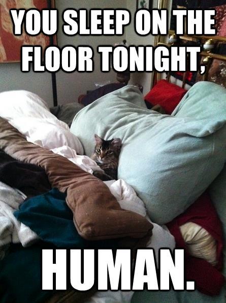 You sleep on the floor tonight….