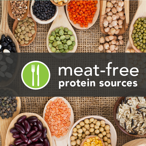 Vegetarian protein sources.