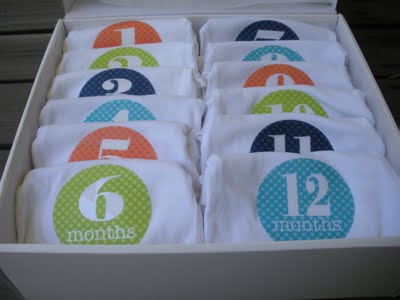 Monthly Onesies–Great shower gift idea!