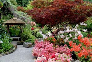 Japanese Garden, the Butchart Gardens