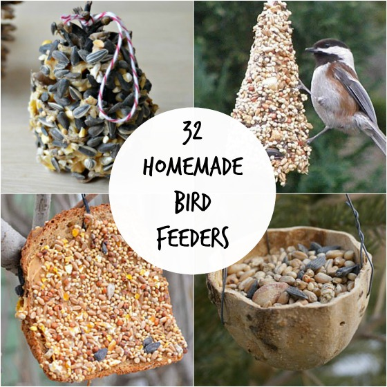 32 Easy Homemade Bird Feeders -   DIY Natural Bird Feeder