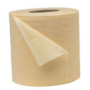 21. Toilet paper makes the best, cheapest seed paper. -   32 Cheap And Easy Backyard Ideas