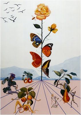 Salvador Dali The Butterfly Effect We Know How To Do It