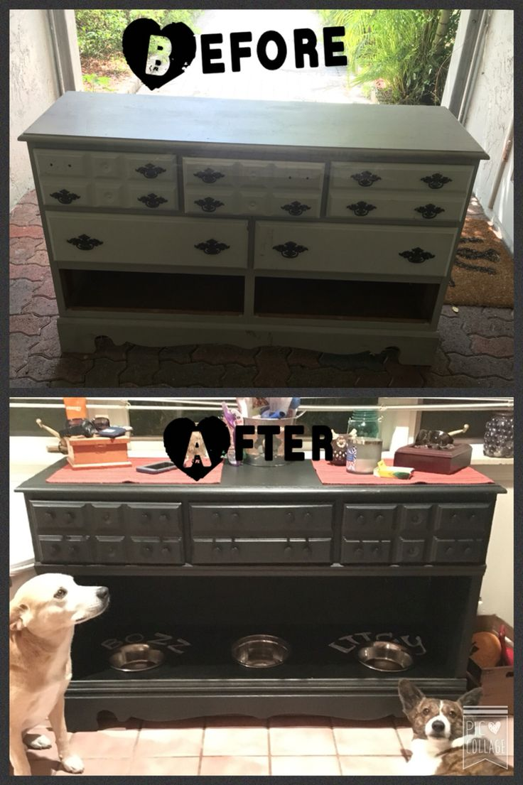Diy Pet Furniture Ideas We Know How To Do It